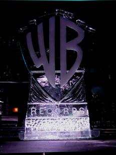 warner bros. ice sculpture world class ice sculpture